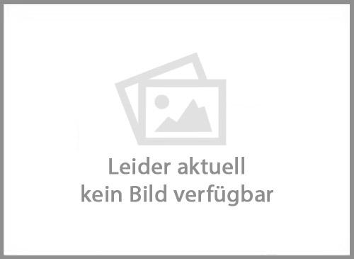 Sportauspuff Volkswagen Scirocco III Typ 13, Coupe